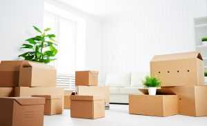 moving company Arvada